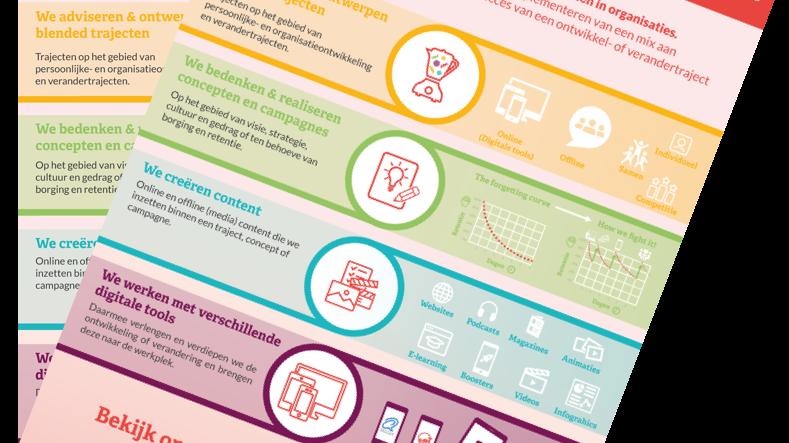 preview infographic: hoe T-wise ontwikkeltrajecten en verandertrajecten versterkt